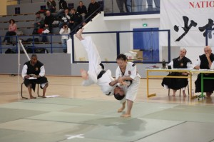 Coupe de France 2012 de Shorinji Kempo