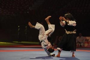 27ème festival des arts martiaux de Bercy