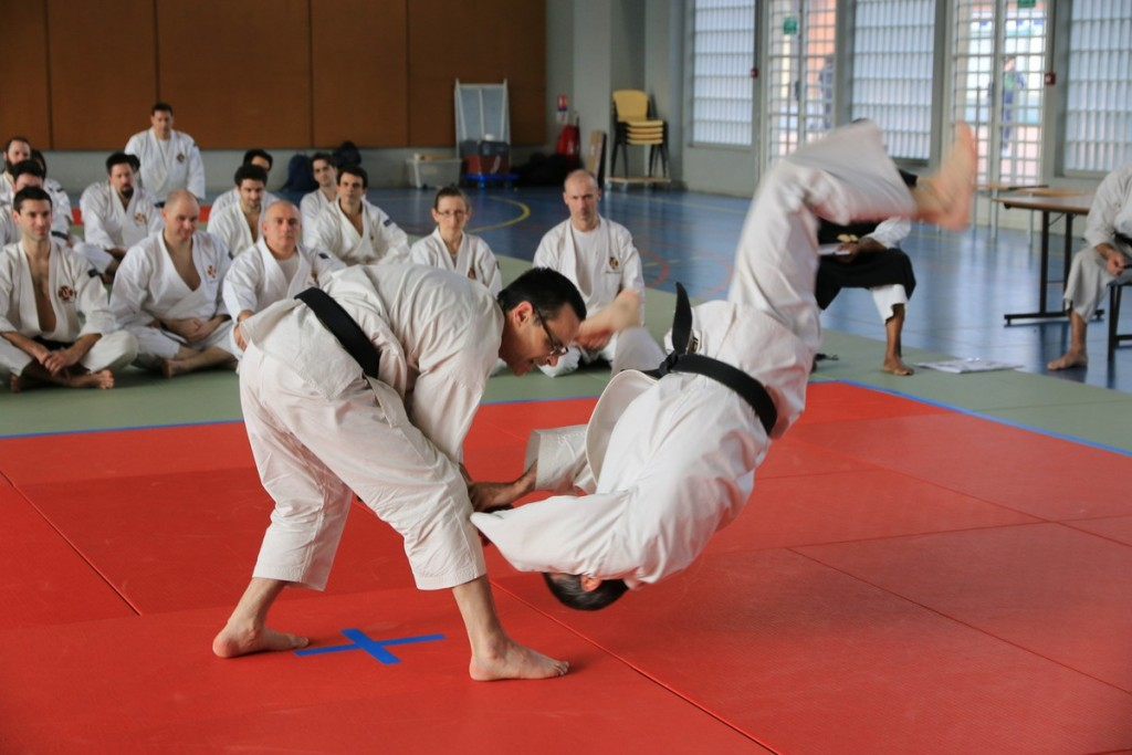 Coupe de France de Shorinji Kempo 2015 – © B. Bâlon / Shorinji Kempo Le Vexin