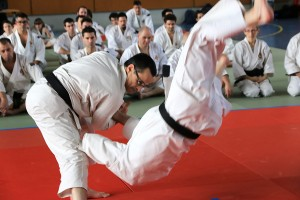 Coupe de France de Shorinji Kempo 2015