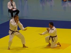 Taïkaï européen 2015, participants français au Embukaï dans la catégorie kyukenshi - © Yuko I.B.