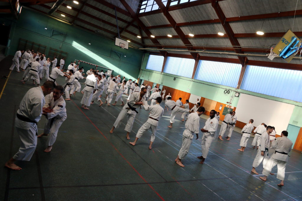 Stage national francilien de Shorinji Kempo à Jouy-le-Moutier