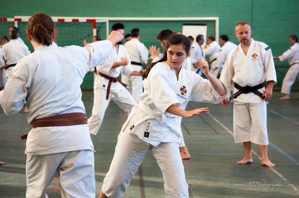 Stage national francilien de Shorinji Kempo à Jouy-le-Moutier – © Stéphanie Tirtiat